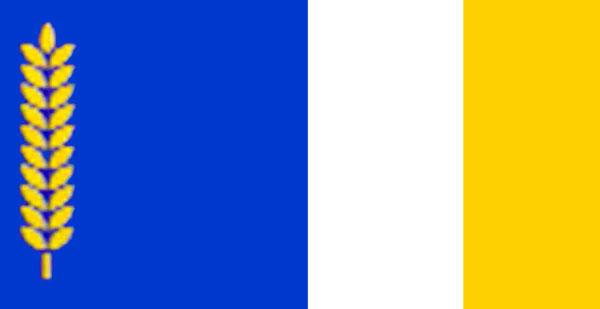 Флаг-района-3