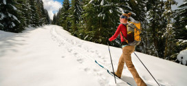 Первенство по ориентированию на лыжах